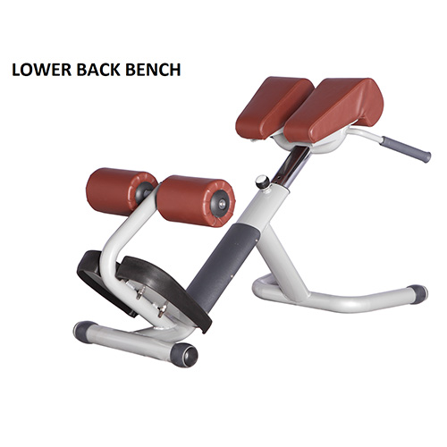 Bench Press Lower Back Lower Back Bench 28 Images Lower Back Bench Ms L108 Marbo Sport Milo